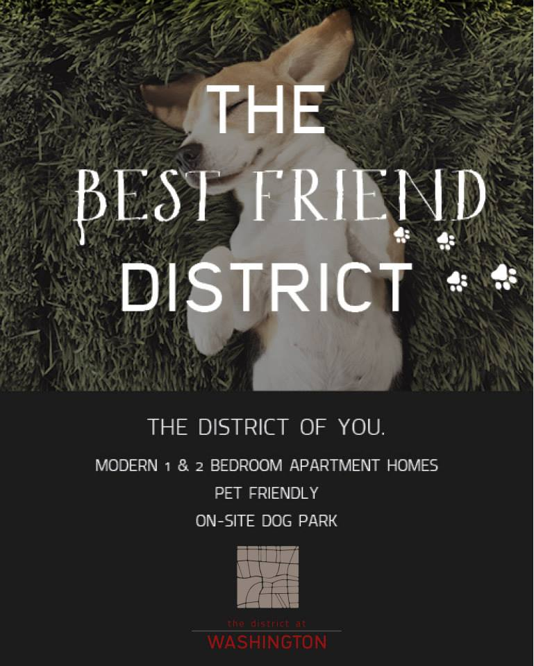 District-BestFriend